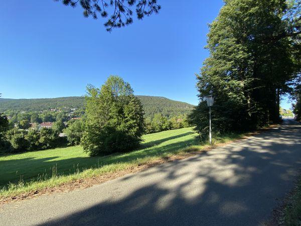 Baugrund Wöllersdorf-Steinabrückl